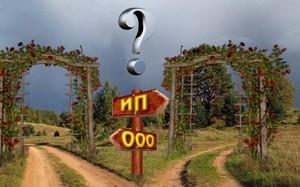 Путь развития в ООО или ИП