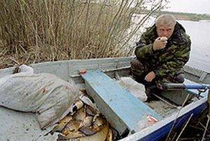 Виды запретов на ловлю рыбы