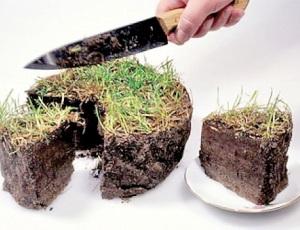 Подробнее о оформлении земли в собственность