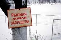Запрет на ловлю рыбы: в каких случаях существует?