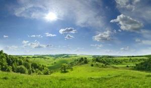Аренда земельного участка-договор