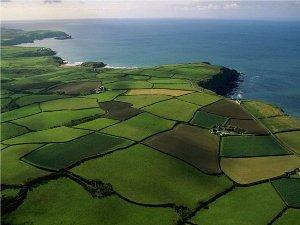 Понятия изменения назначения земельного участка