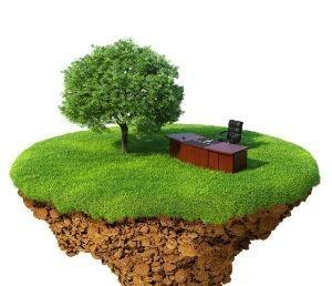 Правильно оформить земельный участок в собственность