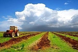 Земли под личное подсобхозяйство