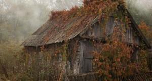 Признание права собственности на бесхозное имущество