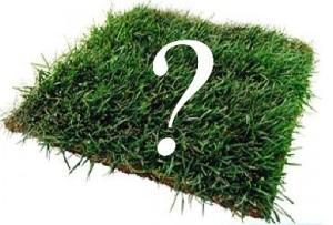 Как рассчитать кадастровую стоимость земли?