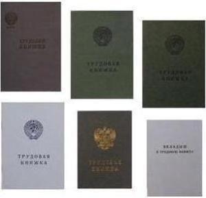 Образцы Трудовых Книжек По Годам Выпуска - фото 3