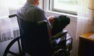 Присутствие инвалидности
